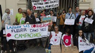 Une manifestation de soutien au maire de Langouët, Daniel Cueff, convoqué pour avoir interdit l'usage des pesticides près des habitations de sa commune,le 22 août 2019 à Rennes. (PHILIPPE RENAULT / MAXPPP)