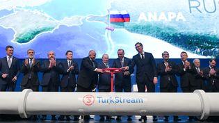 Inauguration du gazoduc TurkStream entre la Russie et la Turquie, en présence de (de gauche à droite), Alexander Novak (ministre russe de l'Energie), Alexei Miller (PDG de la société gazière russe Gazprom), Boyko Borisov (Premier ministre bulgare), Vladimir Poutine ministre (président russe),Recep Tayyip Erdogan (président turc) , Aleksandar Vucic (président serbe), le 8 janvier 2020, à Istanbul. (ALEXEI DRUZHININ / SPUTNIK)