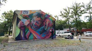 Une fresque murale réalisée dans le cadre de l'exposition Les Sentiers des arts. (FRANCEINFO)