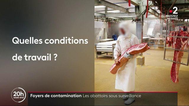 Covid-19 : pourquoi les abattoirs sont-ils des foyers de contaminations ?