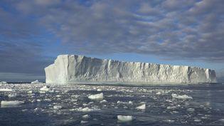 Un iceberg flotte près de la Géorgie du Sud, dans l'Antarctique, une zone particulièrement touchée par le réchauffement climatique, le 22 août 2014. (YVA MOMATIUK AND JOHN EASTCOTT / MINDEN PICTURES / AFP)