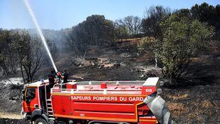Des pompiers du Gard interviennent près de Saint-Gilles, le 29 juin 2019. (SYLVAIN THOMAS / AFP)