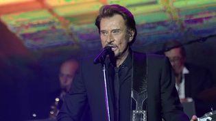 """Johnny Hallyday au concert des """"Vieilles Canailles"""", le 6 novembre 2014 à Bercy, à Paris  (Sipa)"""