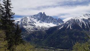 Le massif du Mont-Blanc vu depuis Chamonix (Haute-Savoie), le 20 juin 2021. (ANABELLE GALLOTTI / RADIO FRANCE)