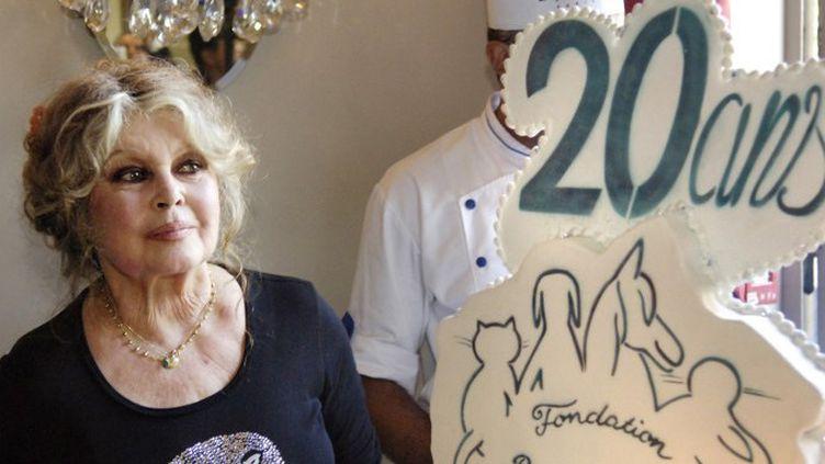 Brigitte pose pour les 20 ans de safondation en 2006.  (STEPHANE DE SAKUTIN / AFP)