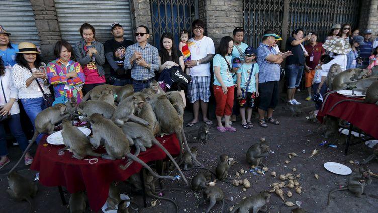 Des macaques mangent des fruits pendant leur festival à Lopburi, au nord de Bangkok, le 29 novembre 2015. (JORGE SILVA / REUTERS)