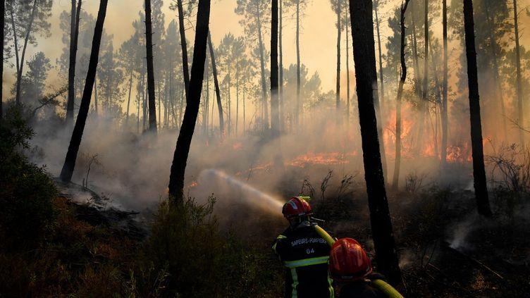 Des pompiers luttent contre le feu dans la forêt deVidauban, dans le Var, le 18 août 2021. (NICOLAS TUCAT / AFP)