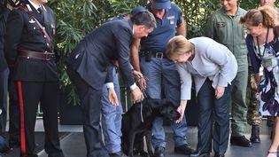 Angela Merkel et Matteo Renzi avec le chien sauveteur Leo, à Maranello, en Italie, le 31 août 2016. (GIUSEPPE CACACE / AFP)