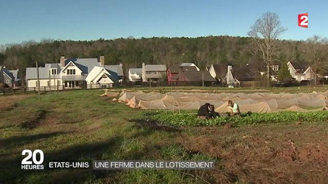 États-Unis : quand un quartier se crée autour d'une ferme