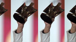 Untrophée des Victoires de la musique brandit par un lauréat en 2006. (F.DUGIT / J.-B. QUENTIN / MAX PPP)