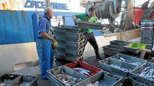 Un chalutier et sa cargaison de poissons dans le port de Sète (Hérault). (MAXPPP)