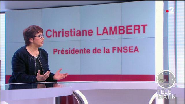 Les 4 Vérités - « Les agriculteurs ont besoin de reconnaissance », dit Christiane Lambert, présidente de la FNSEA