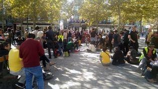 Les manifestants se sont d'abord rendus sur le site de Sivens pour un moment de recueillement, avant de venir à Gaillac; (ROMAIN DEZEQUE / RADIO FRANCE)