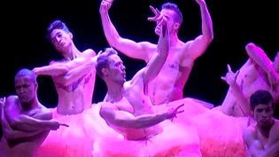 """Un spectacle décalé, plein d'humour grâce aux 6 danseurs de """"Chicos Mambos""""  (F3/culturebox)"""