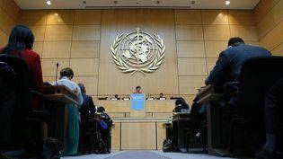 La directrice générale de l'OMS, Margaret Chan, le 23 mai 2016, dans les locauxdes Nations unies à Genève (Suisse). (DENIS BALIBOUSE / REUTERS)