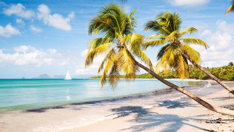 Les vols ont nettement repris entre l'Hexagone et les Antilles. (Illustration) (MATTEO COLOMBO / MOMENT RF / GETTY IMAGES)