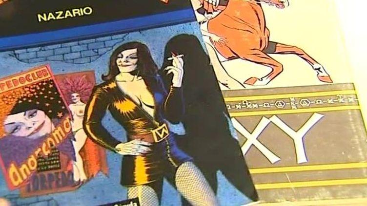 Les bandes-dessinées érotiques du musée de la BD d'Angoulême  (France3/Culturebox)