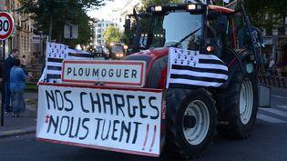 Une manifestation d'agriculteurs, place de la Nation, à Paris, le 3 septembre 2015. (CITIZENSIDE/GEORGES DARMON / CITIZENSIDE.COM)