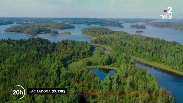 Le lac Ladoga en Russie, repère des phoques en danger