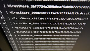 Des listes de virus sur un écran du LHS (Laboratoire de haute sécurité) de l'Inria (Institut national de recherche en informatique et automatique), le 3 novembre 2016 à Rennes (Ille-et-Vilaine). (DAMIEN MEYER / AFP)