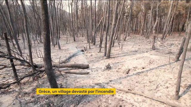 Grèce : les incendies continuent de ravager le pays, la situation demeure très préoccupante