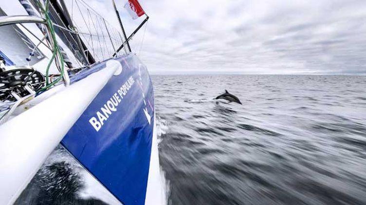 Banque Populaire continue d'avaler les milles sur le Vendée Globe