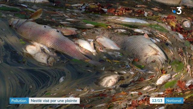 Pollution : Nestlé visé par une plainte