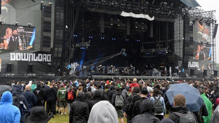 Le public du Download Festival sous la pluie, à l'hippodrome de Longchamp le 12 juin 2016  (Bertrand Guay / AFP)