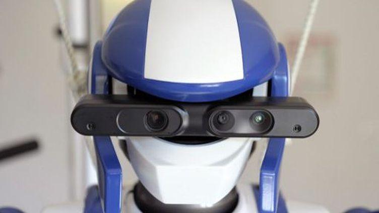 Montpellier (France), mars 2014. Robot humanoïde HRP-4 conçu par la société japonaise Kawada. C'est le seul robot de ce genre en Europe. (AFP PHOTO / PASCAL GUYOT)