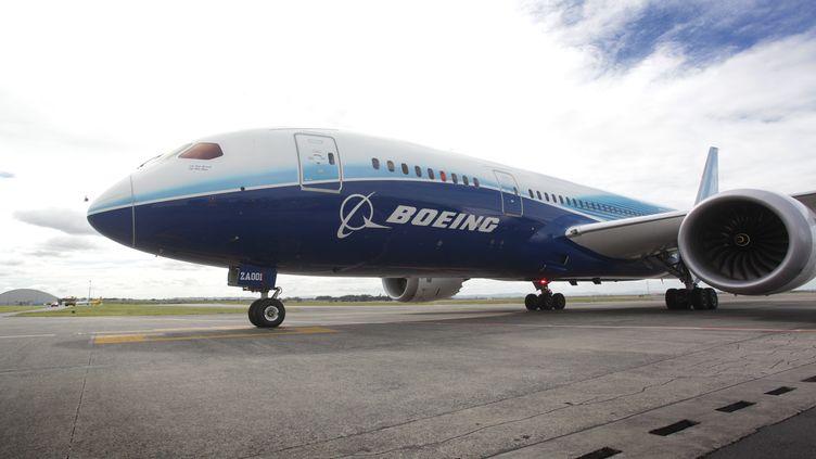 Un Boeing787 Dreamliner le 12 novembre 2012 à Auckland en Nouvelle-Zélande. (BRADLEY AMBROSE / AFP)