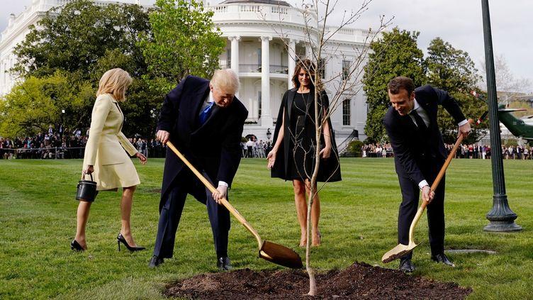 Les présidents américain et français, Donald Trump et Emmanuel Macron, plantent un chênedans les jardins de la Maison Blanche à Washington (Etats-Unis), le 23 août 2018. (JOSHUA ROBERTS / REUTERS)