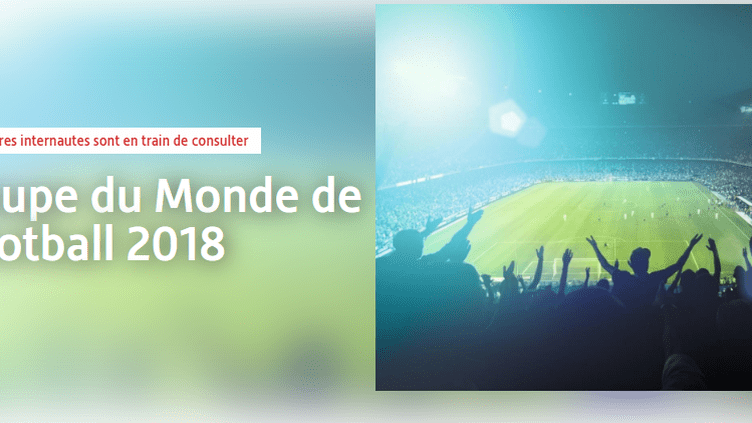 Capture d'écran de la page de vente de billets pour la Coupe du monde 2018 sur le site Viagogo, le 5 juin 2018. (VIAGOGO)