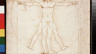 """""""Les proportions humaines"""" ou """"L'homme de Vitruve"""" de Léonard de Vinci, 1490. (LEEMAGE)"""