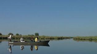 Le parc naturel régional du marais de Brière, en Loire-Atlantique. (CAPTURE D'ÉCRAN FRANCE 3)