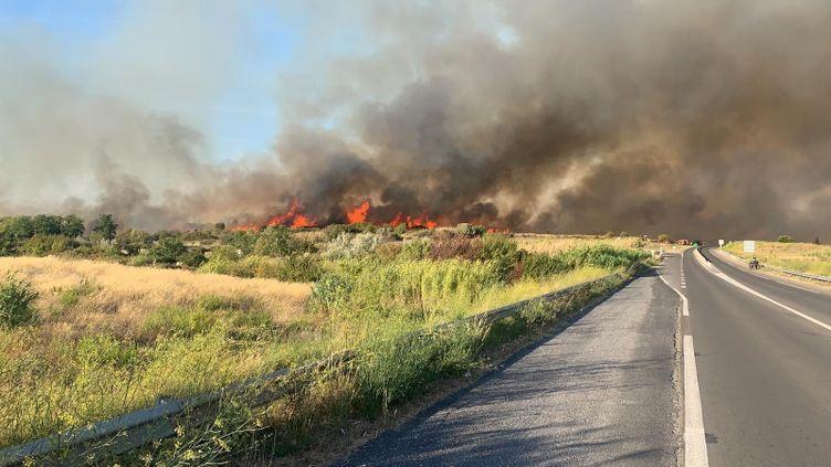 L'incendie s'est déclaré à Loupian (Hérault), au bord de l'autoroute A9 entre Agde et Sète, dimanche 8 septembre 2019. (SDIS 34)