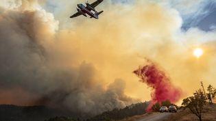 Un avion largue du retardant, le 20 août 2020, à Healdsburg (Californie). (JOSH EDELSON / AFP)