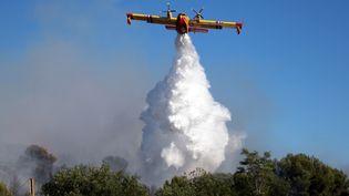 Un canadair intervenant sur un feu de forêt près de Vitrolles (Bouches-du-Rhône), le 10 juillet 2019 (CHRISTOPHE SIMON / AFP)