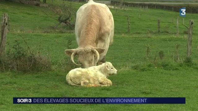 Des élevages soucieux de l'environnement