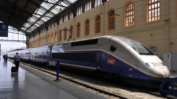 Un TGV en gare de Marseille Saint-Charles (Bouches-du-Rhône), le 15 novembre 2011. (BOB DEWEL / ONLY FRANCE)