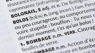 """Dans l'édition 2016, le mot """"bolos"""" avait par exemple fait son apparition dans le dictionnaire. (ERIC FEFERBERG / AFP)"""