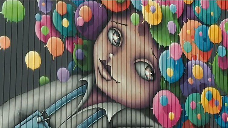 Graffeuse Vinie à Albi (Tarn) (FRANCE 3 / FRANCETV INFO)