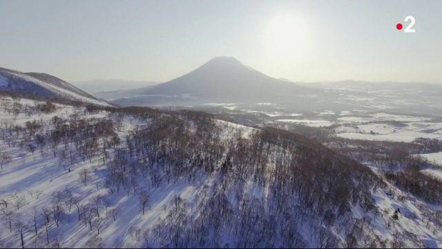 Japon : des tournois de boules de neige
