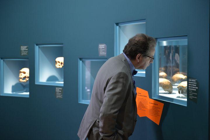 """Pascal Depaepe, un des deux commissaires scientifiques de """"Néandertal, l'expo"""", qui se tient au Musée de l'homme du 28 mars 2018 au 7 janvier 2019, à Paris, contemple le crâne découvert dans la vallée de Néander, en Allemagne. (MNHN - JC DOMAINE)"""