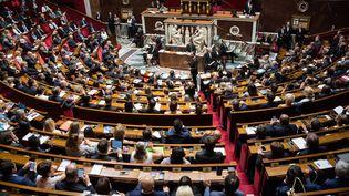 L'hémicycle de l'Assemblée nationale, le 5 juillet 2017. (MAXPPP)