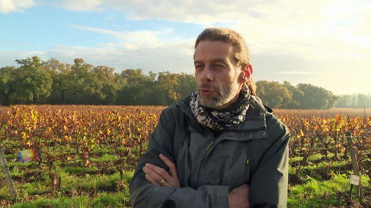 """Nicolas Lesaint viticulteur dans le bordelais et auteur de la BD """"Couleur Vigne"""" (France 3 Nouvelle Aquitaine)"""