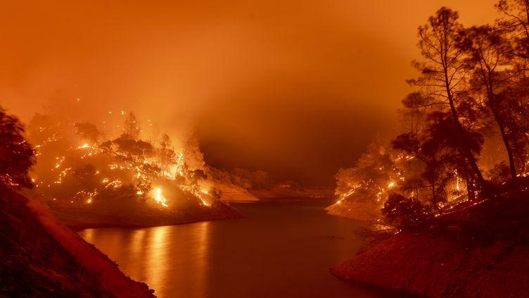 Les rives du lac Berryessa, dans le nord de la Californie, sont consumées par l'incendie Hennessey, le 18 août 2020. (JOSH EDELSON / AFP)