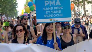 Une pancarte pour la PMA, lors de la gay-pride à Paris, le 29 juin 2019. (BRUNO LEVESQUE / MAXPPP)