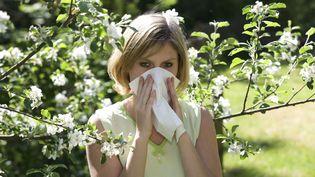 Les pollens d'arbres ont déjà fait leur retour (Photo d'illustration) (CHROMORANGE / MAXPPP)