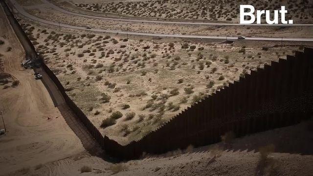 Donald Trump souhaite terminer de clôturer la frontière américano-mexicaine mais cela pourrait mettre en péril l'écosystème environnant.