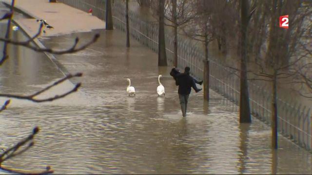 Inondations dans le Val-de-Marne : chacun tente de faire face à l'urgence